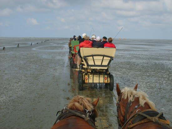 cuxhaven44
