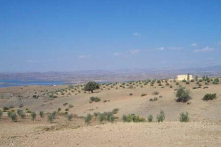 marrakesch_a05